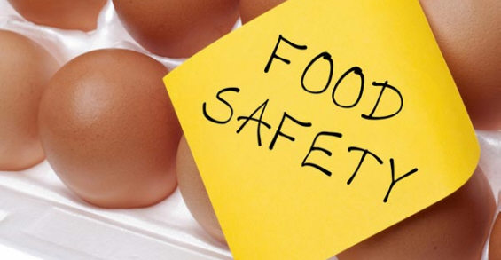 Food Safety and Hygiene Eggs